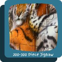 ~200-300 Piece Jigsaw