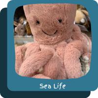 ~Sea Life
