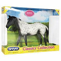 Black Semi Leopard Appaloosa